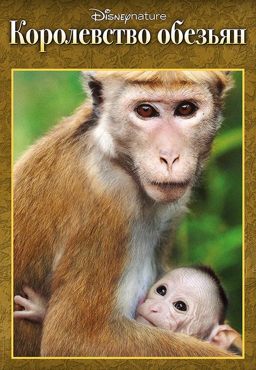 Постер к фильму Королевство обезьян 2015