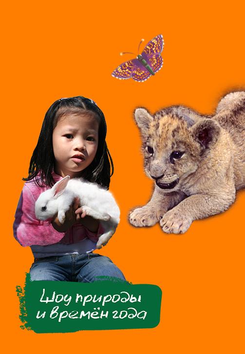 Постер к сериалу Шоу природы и времён года 2018