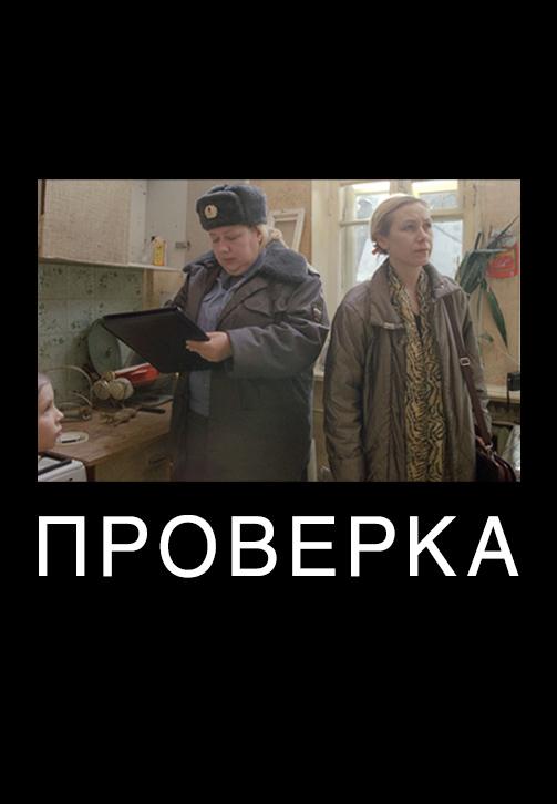 Постер к фильму Проверка 2013