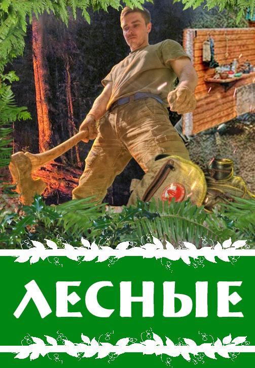 Постер к сериалу ЛЕСНЫЕ 2020